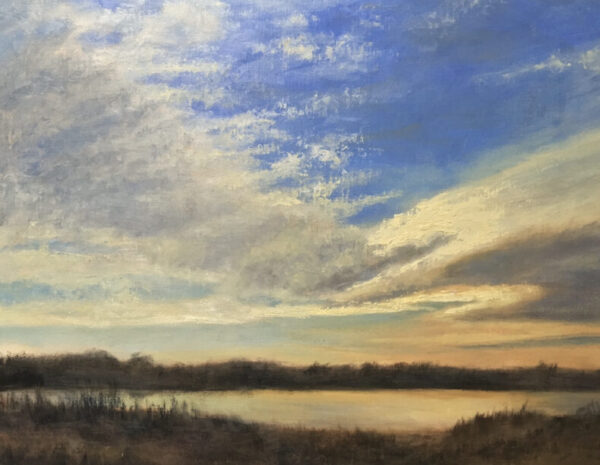 """""""Flooded Field/ Late Evening"""""""