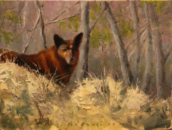 Friend or Feral? 14×23.75 2012 oil on birch panel 2012