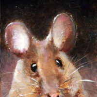 Mouse for Carolyn 2012