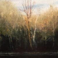 Wildwood Reflecting Pond