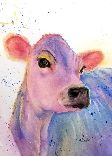 Colorful Jersey Cow